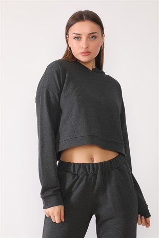 SAKS, CROP SWEATSHIRT | curly